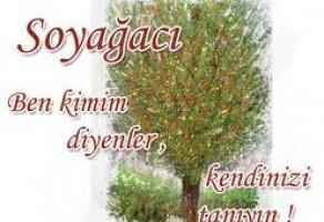 Soy Ağacı Bati Ermenistan Ve Bati Ermenileri Sorunlari