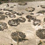 EC Aragadsotn bölgesi, Yukarı Naver, mezar alanının merkezi kısmı, M.Ö. XX.-XVII. yüzyıl (kazılar ve fotoğraf H. Simonyan)